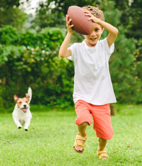 Enjoy your backyard again with flea and tick prevention services in Athens GA