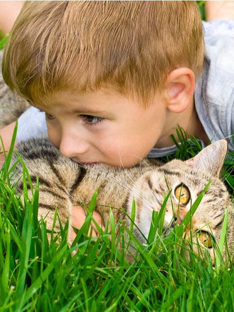 Keep your family and pets safe with tick spray for yard