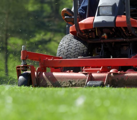lawn care services including mowing