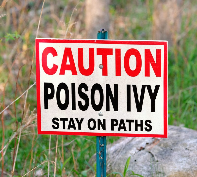 Caution poison ivy sign with grass background